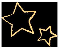 providers_star